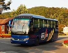 Chinese BUS Export Analysis 2013